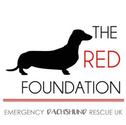 The Red Foundation emergency dachshund uk logo